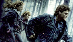 Top Shelf Tuesday - Harry Potter and the Deathly Hallows: Part 1