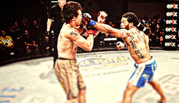 Bellator 50 Highlights