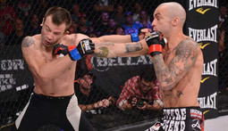 Bellator Season 11 - Best Knockouts